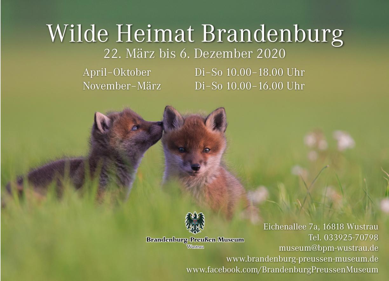 Anke Kneifel Aus Neuruppin Stellt Naturfotografien In Wustrau Aus