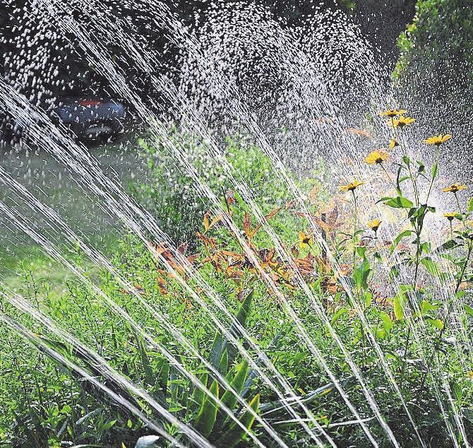 Für die Bewässerung des Gartens gibt es unterschiedliche Systeme.