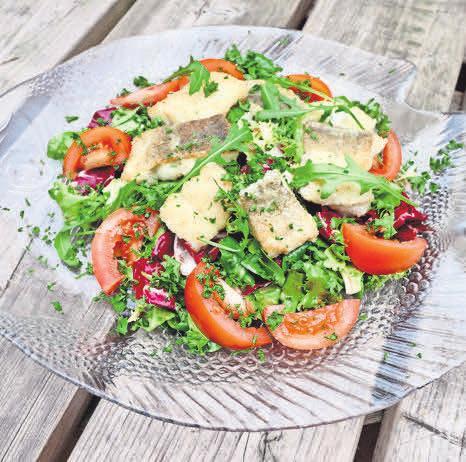 Gebratene Seefischfilets auf Sommersalat – ein gesundes Gericht, das in 15 Minuten auf dem Tisch steht.