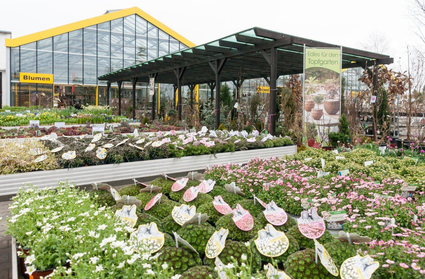 6 000 Quadratmeter umfasst das Verkaufsgebiet des Gartencenters.