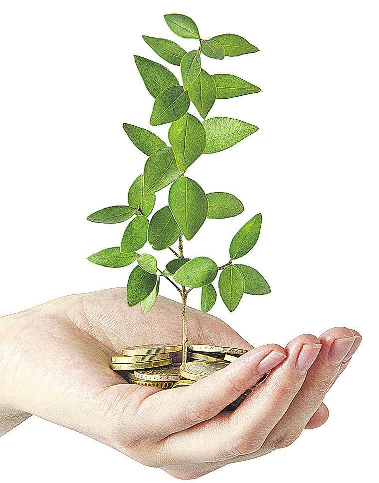 Bei den Anlageinstrumenten werden bevorzugt ETFs eingesetzt, die ESG-Kriterien erfüllen, also bestimmte Standards bei Umweltschutz, sozialen Belangen und guter Unternehmensführung. Foto: Dmitry - Fotolia