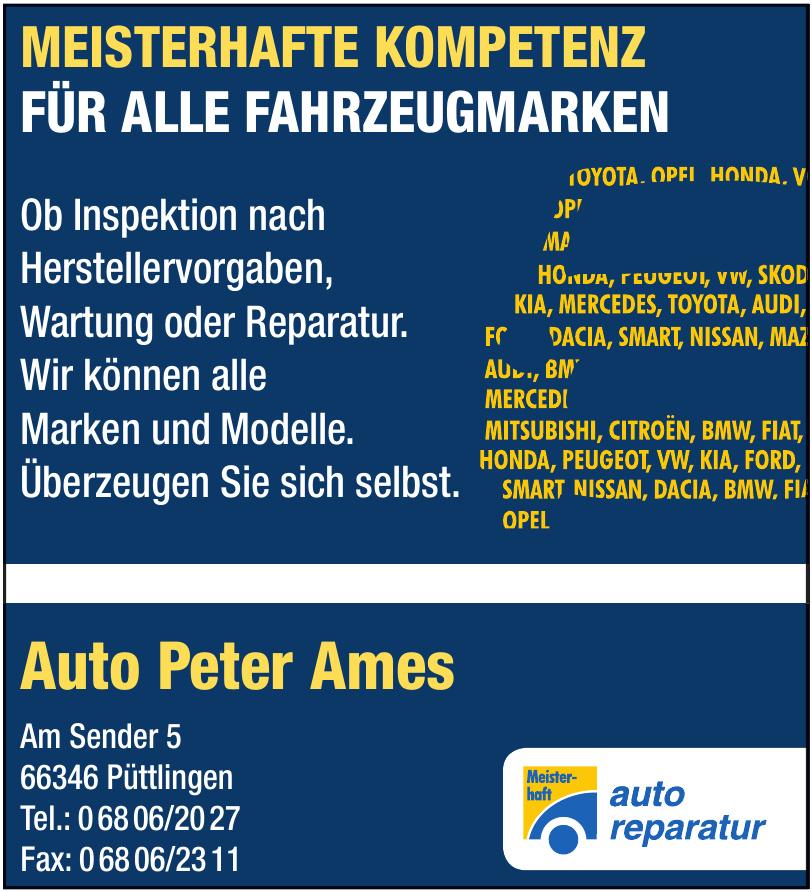 Auto Peter Ames
