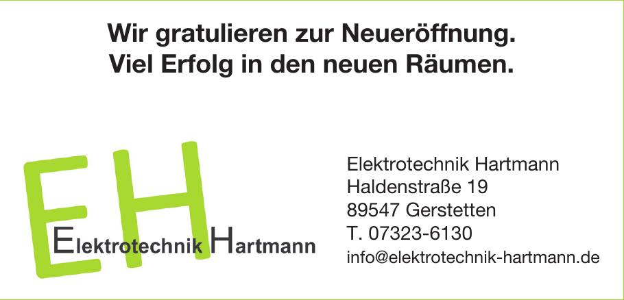 Elektrotechnik Hartmann