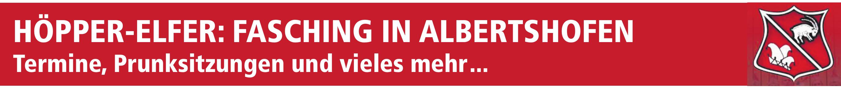 Höpper-Elfer: Fasching in Albertshofen Image 1