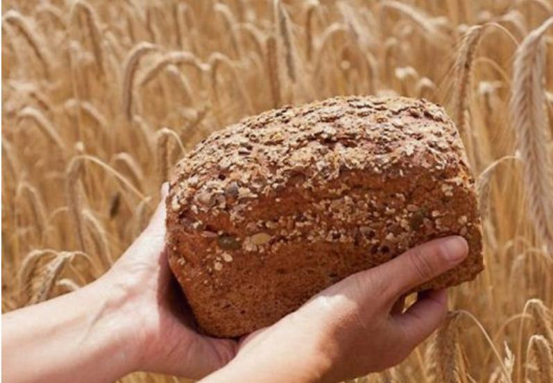 Kastenbrot aus frisch gemahlenem Korn.