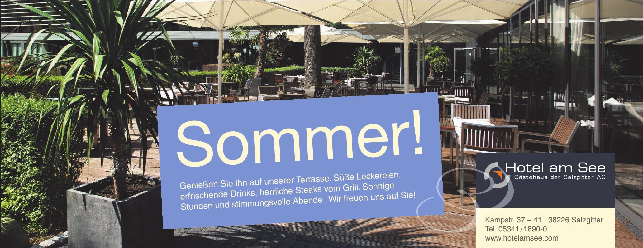 Hotel am See, Gästehaus der Salzgitter AG