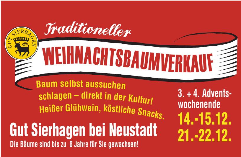 Traditioneller Weihnachtsbaumverkauf Gut Sierhagen bei Neustadt