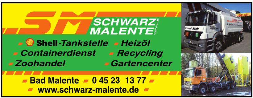 Schwarz GmbH & Co. KG
