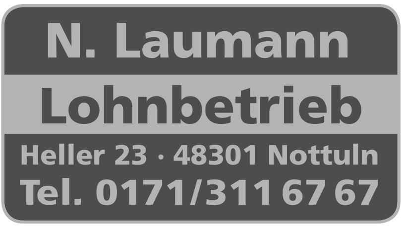 N. Laumann Lohnbetrieb