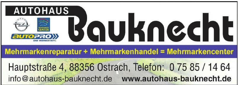 Autohaus Bauknecht