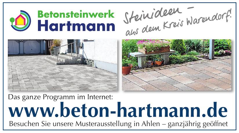 Bernhard Hartmann GmbH & Co. KG