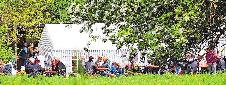 Im Schatten blühender Bäume feiern die Hengstbacher und ihre Gäste das Blütenfest. FOTO:MOSCHEL