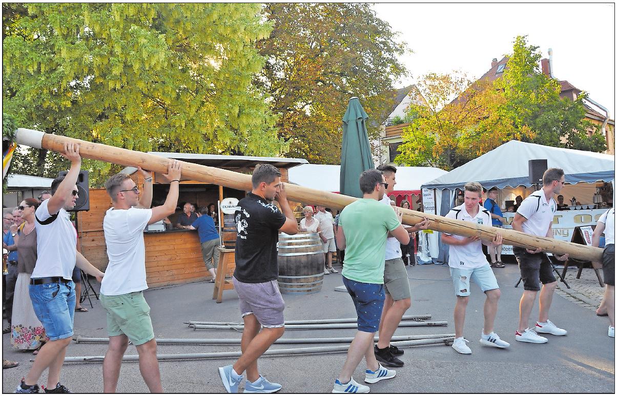 Es kann losgehen:Wenn der Kerwebaum steht, darf gefeiert werden. FOTO: CLEMENS