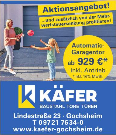 Käfer Baustahl - Tore - Türen