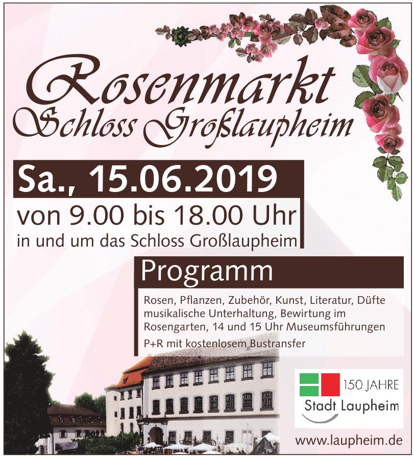 Rosenmarkt Schloss Großlaupheim