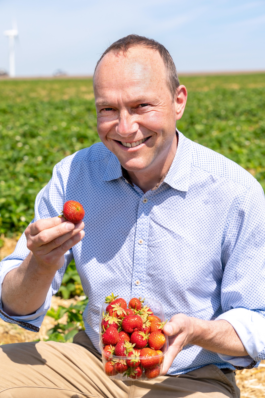 Umwelt- und Landwirtschaftsminister Wolfram Günther (Bündnis 90/Die Grünen) beim Start der Erdbeersaison Anfang Juni in der Nähe von Mügeln