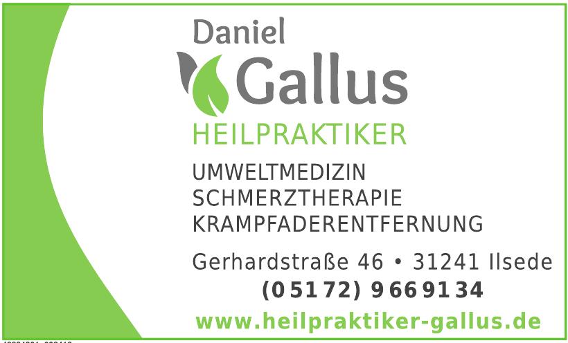 Daniel Gallus Heilpraktiker