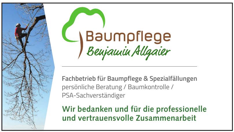 Baumpflege Benjamin Allgaier