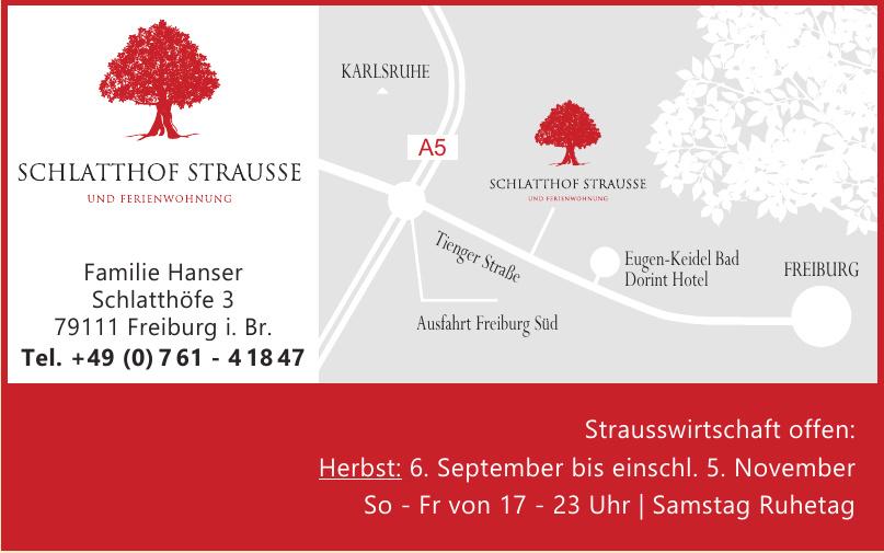 Schlatthof Strausse und Ferienwohnung