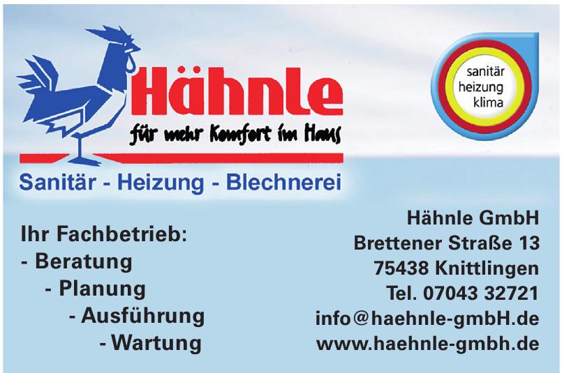 Hähnle GmbH