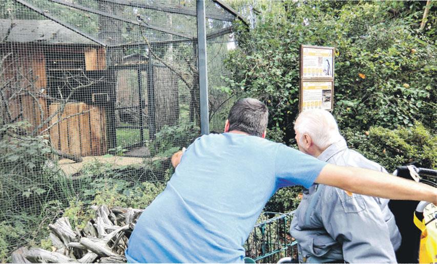 Ein besonderes Erlebnis mit vielen Eindrücken ist der Besuch des Dresdner Zoos