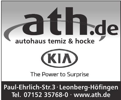 Autohaus Temiz & Hocke