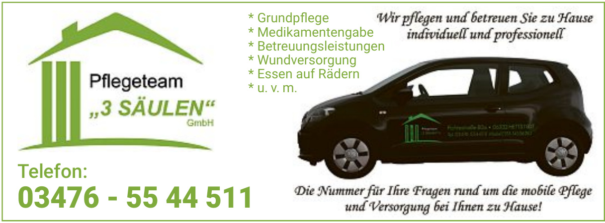Pflegeteam 3 Säulen GmbH