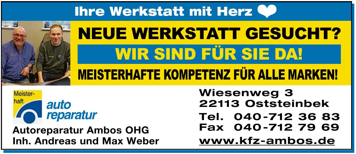 Autoreparatur Ambos - Andreas Weber