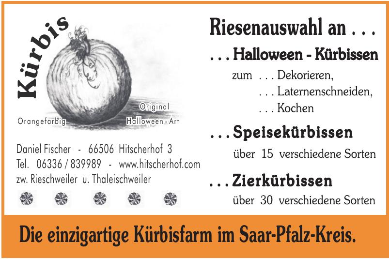Hitscherhof – Fischer Fertigrasen