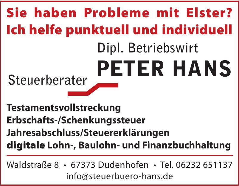 Steuerberater Dipl. Betriebswirt Peter Hans
