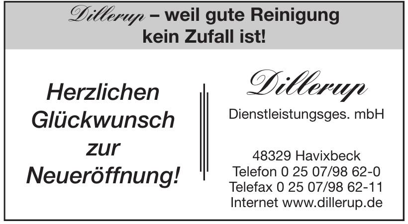 Dillerup Dienstleistungsges. mbH