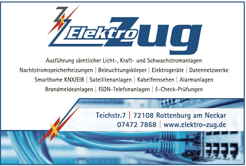 Elektro Zug