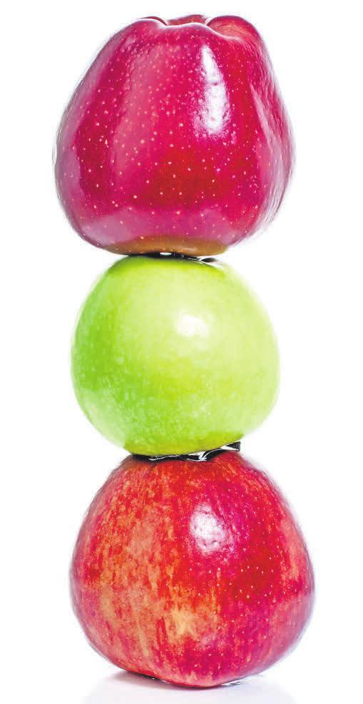 Ob rot, grün oder zweifarbig: Äpfel gehören zu Weihnachten. Fotos: adobe stock/ visions-AD, t. wejkszo, Markus Mainka