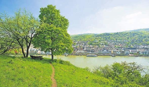 Etappenziel mit Blick auf den Rhein.