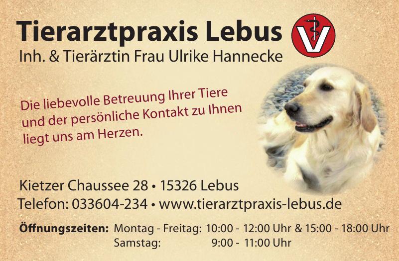 Tierarztpraxis Lebus