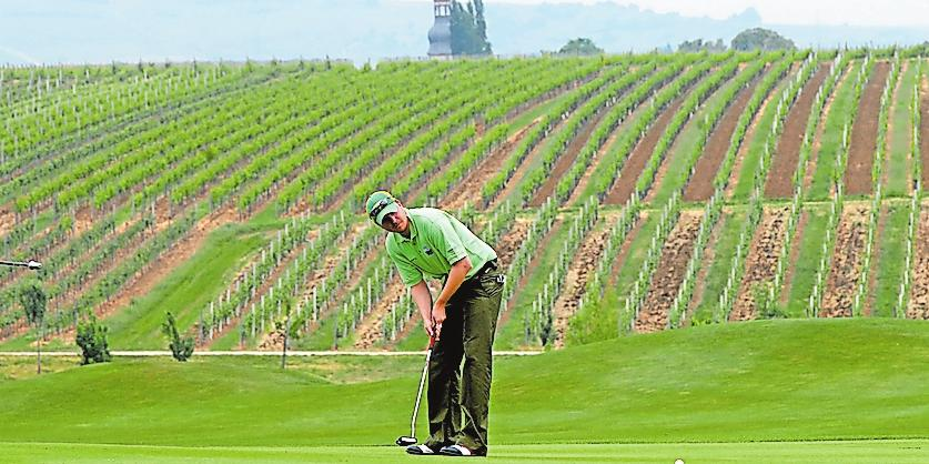 Rebenkulisse: Golfen in der Pfalz, hier in Dackenheim. Foto: Franck
