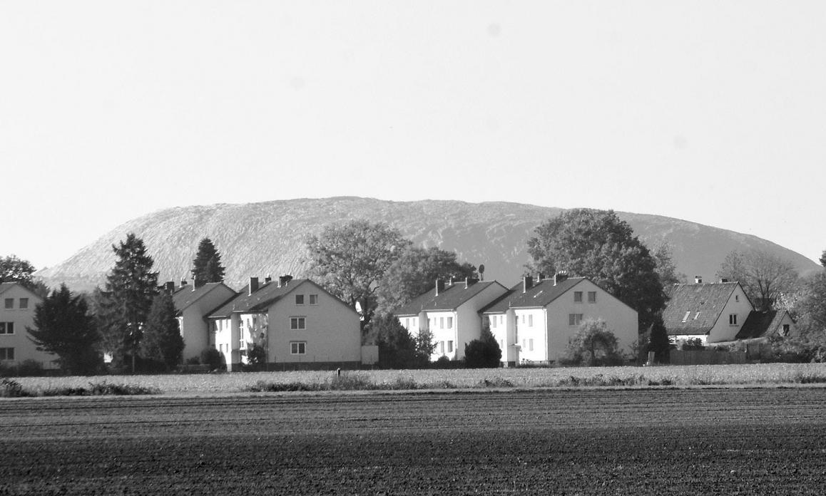 Die Kalihalde Wathlingen beschäftigt seit Jahren die heimische Politik. Archivfoto: Wasinski