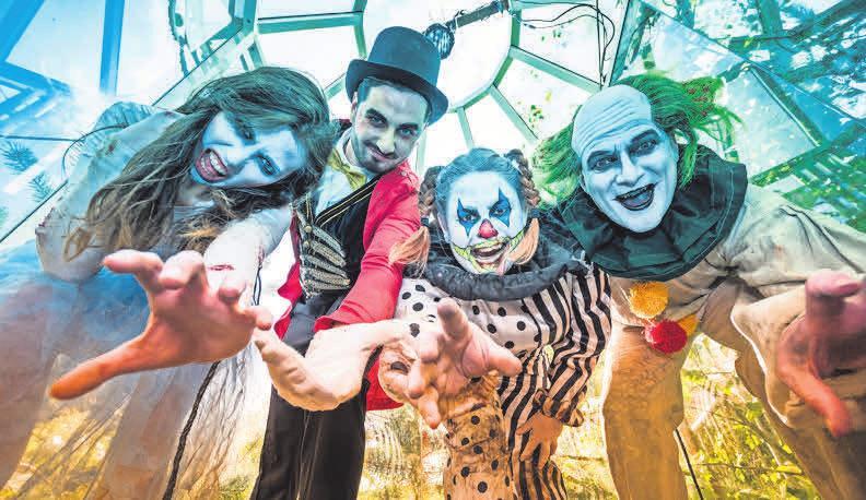 Das größte Halloween- Event des Nordens im Heide Park Resort.