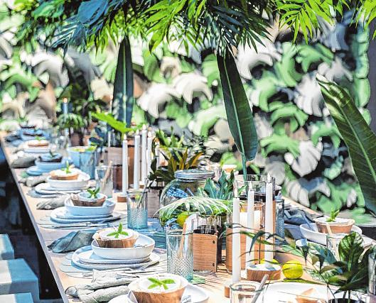 Dschungels an, um Gäste für ein paar Stunden in eine andere Welt zu versetzen.