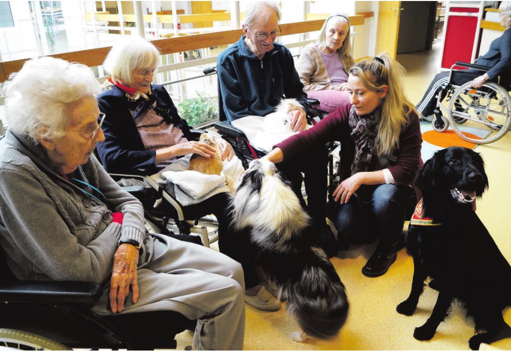 Carina Wrobel bringt für die gemeinsamen Stunden ihre Kaninchen und Hunde mit. Magdalene Schwanke (2. v. l.) genießt mit ihren Mitbewohnern die Kuschelstunden Foto: P. Sonntag