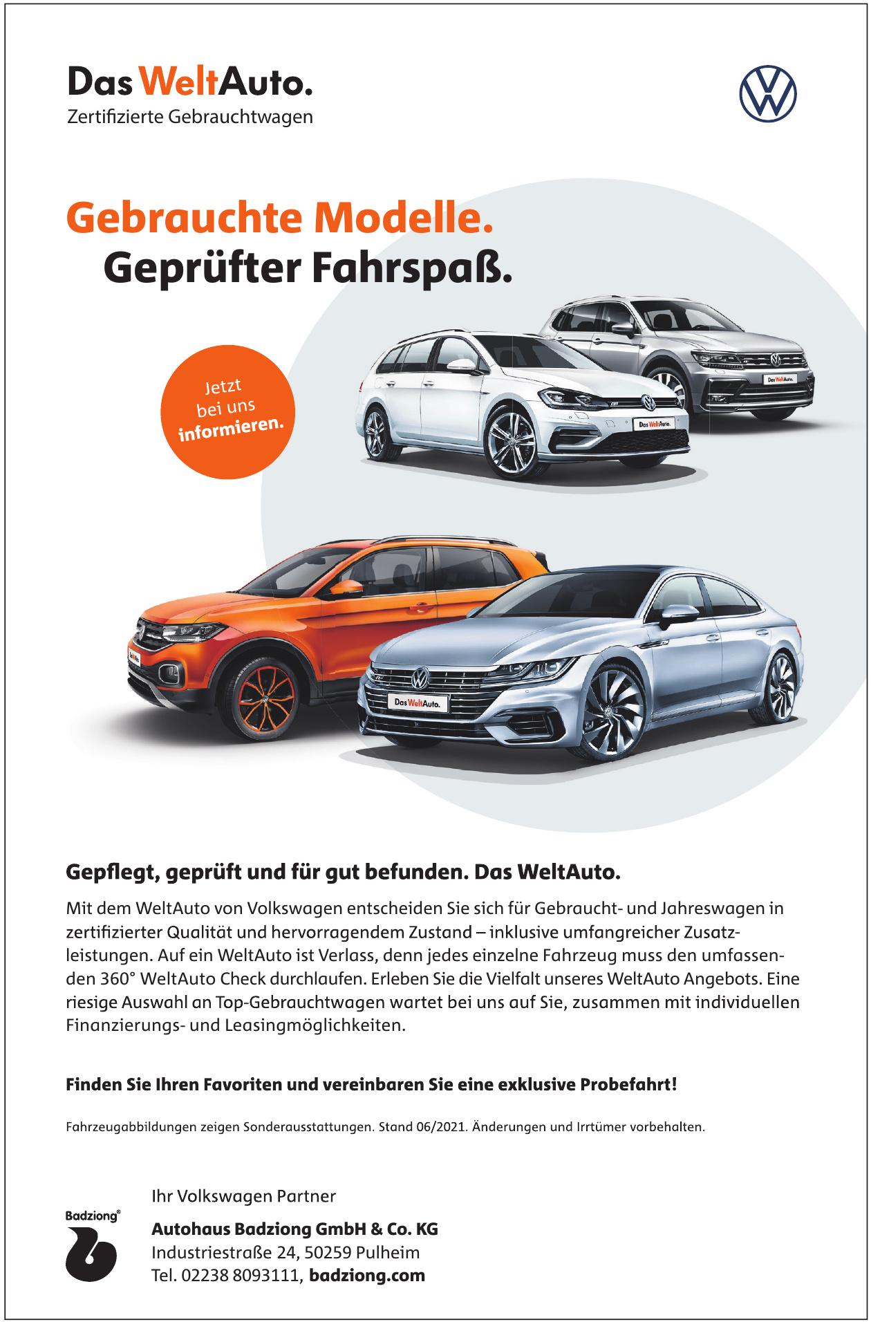 Autohaus Badziong GmbH & Co. KG