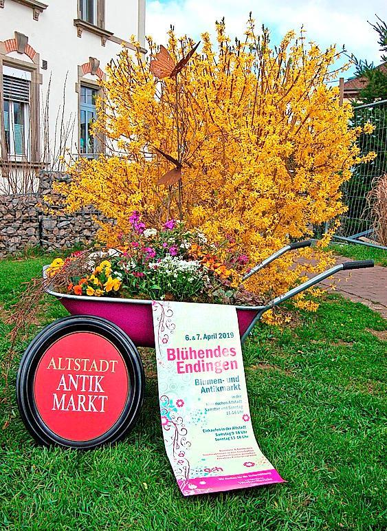 Am Wochenende lädt Endingen zum Blumen – und Antikmarkt.