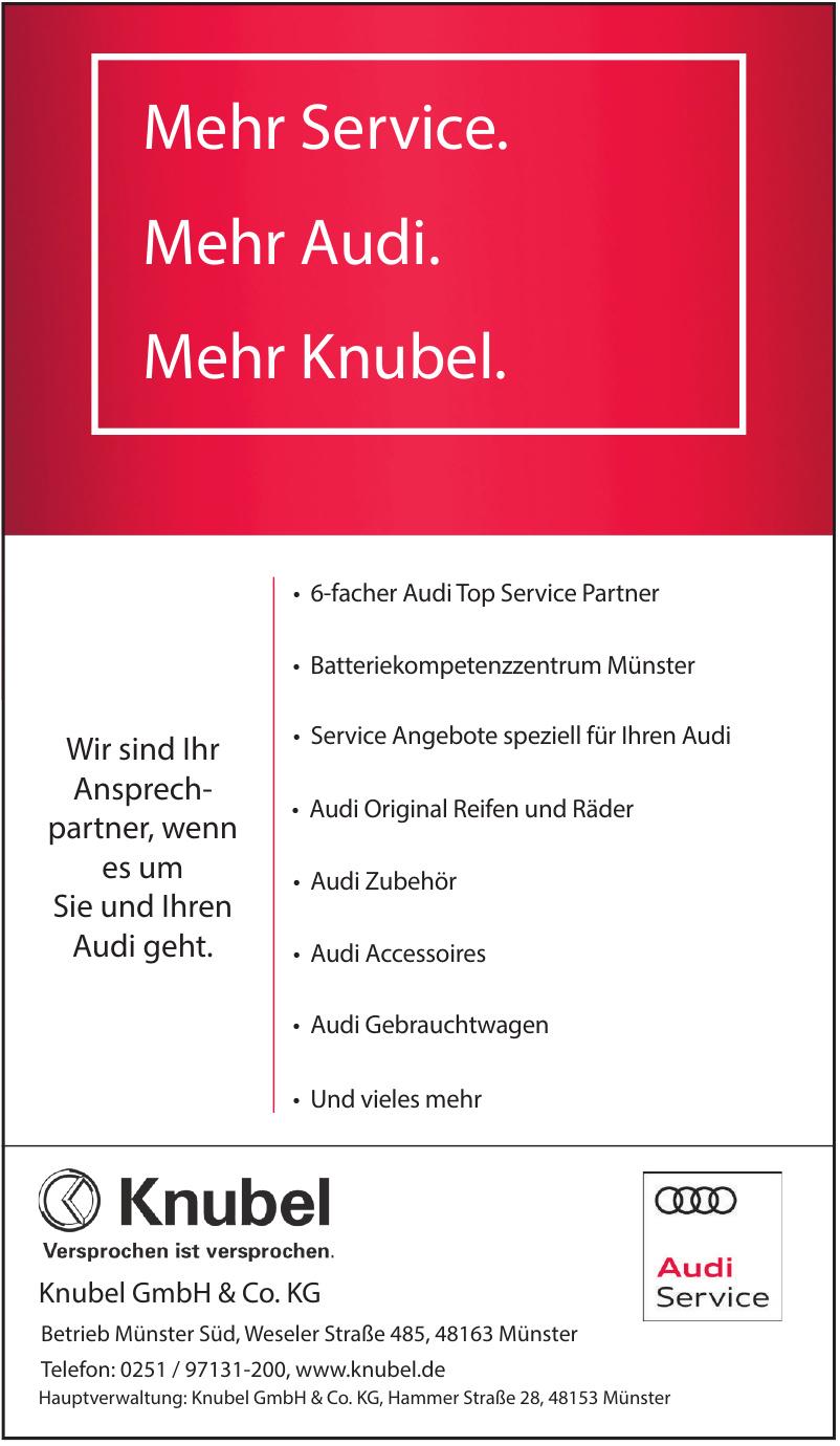 Knubel GmbH & Co. KG