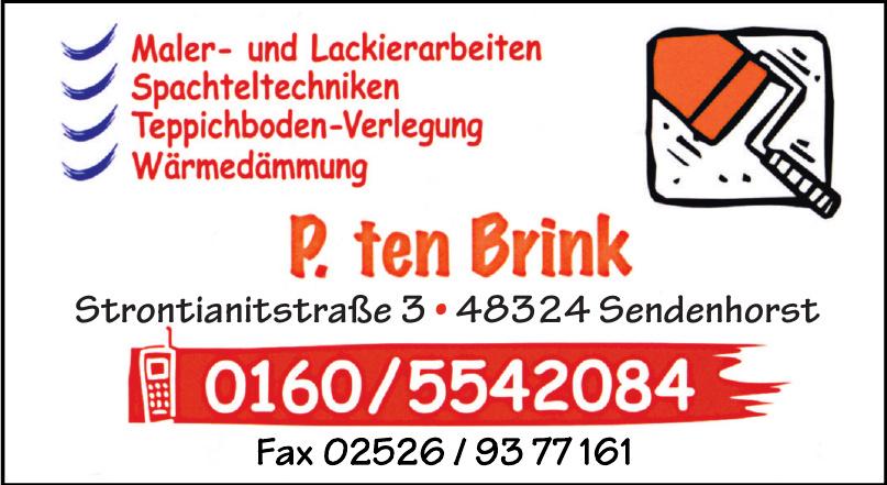 P. ten Brink