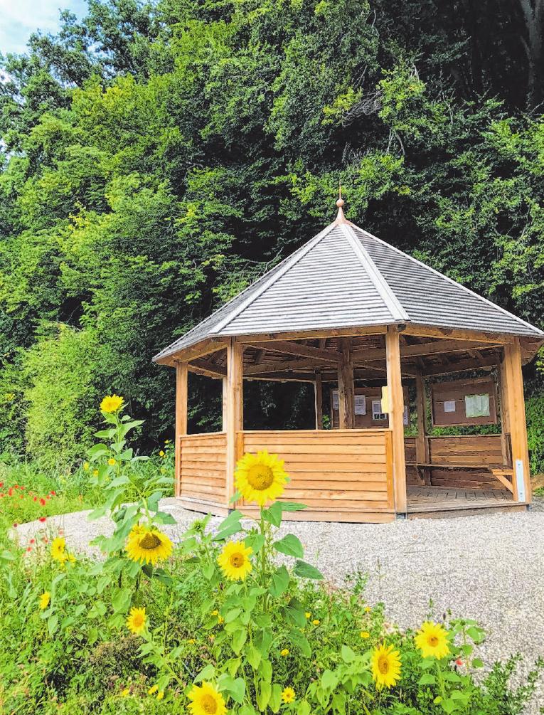 Im Pavillion in Eppishofen kann man vielfältige Eindrücke sammeln und die Schönheiten rund um die Gegend genießen. Foto: Entwicklungsforum Holzwinkel und Altenmünster e.V.
