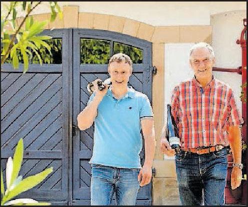 Familienbetrieb Weingut Jul. Ferd. Kimich in Deidesheim: Viel Handarbeit Image 1