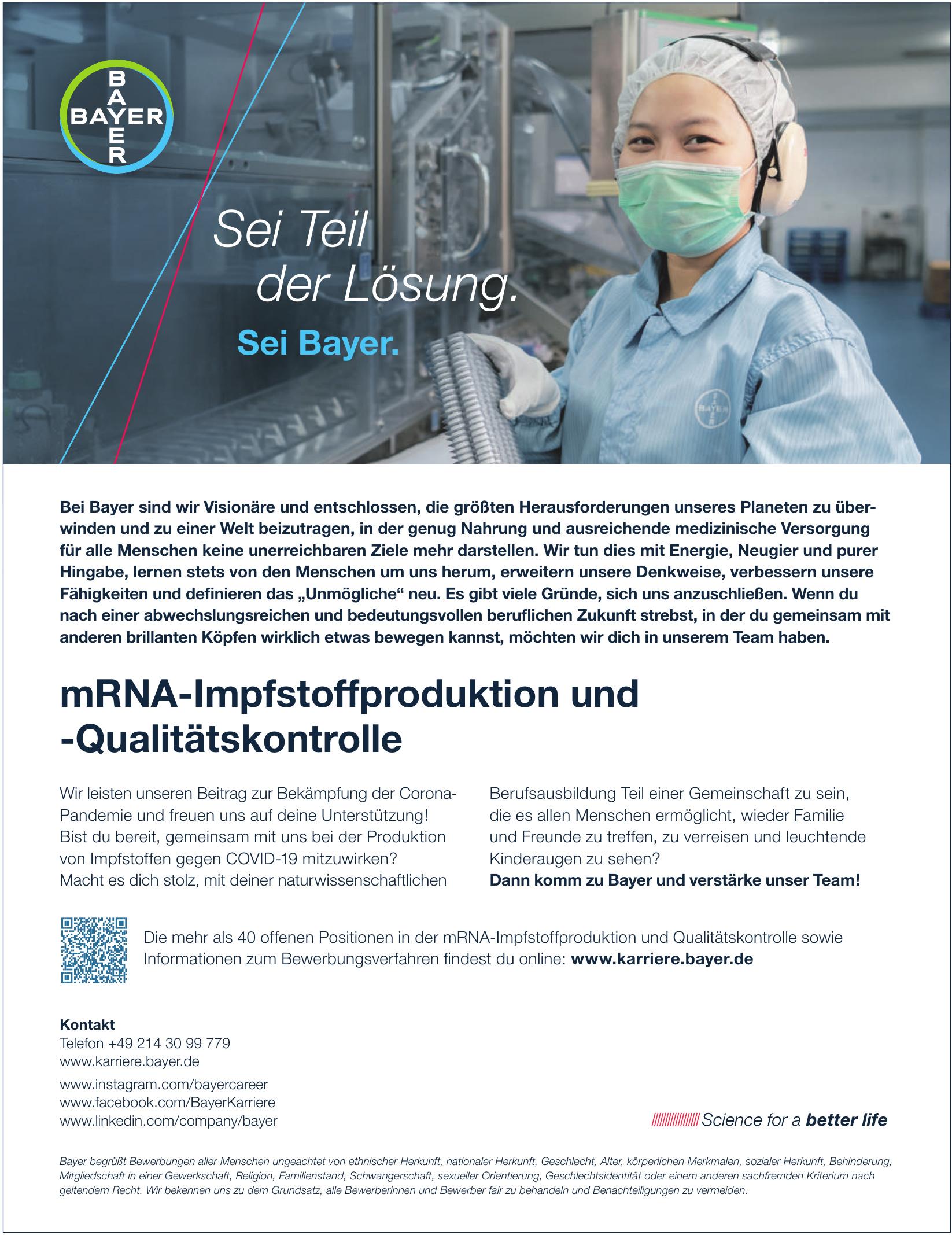 Karriere Bayer