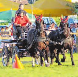 Im Vorjahr sicherte sich u.a. die Reitergruppe Baindt einen reservierten Tisch.