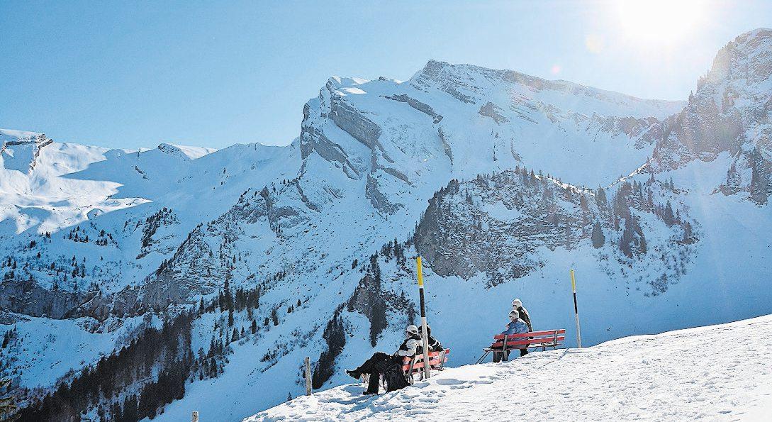 Die Goldi-Familiensafari führt durch eine winterliche Traumlandschaft. Bild: NC