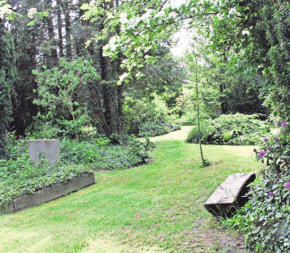 Wer Ruhe abseits des Feiertrubels sucht, ist eingeladen, den Alten Friedhof bei einer Führung zu entdecken.